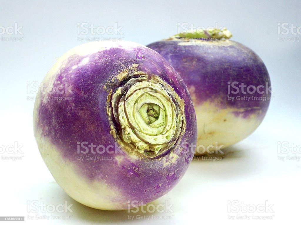purple headed turnips on white background stock photo