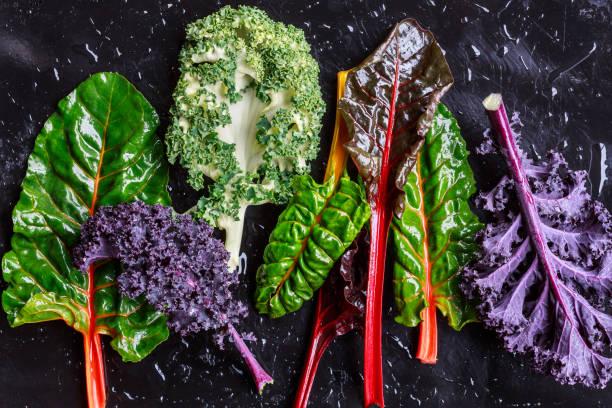 purple grünkohl und mangold - mangoldgemüse stock-fotos und bilder