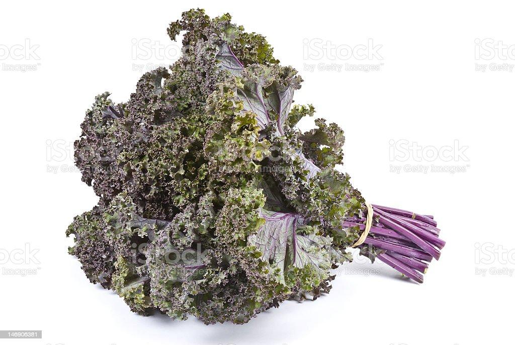 Purple Kale Isolated on White royalty-free stock photo
