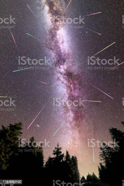 Photo of Purple Milky way falling stars pine trees silhouette