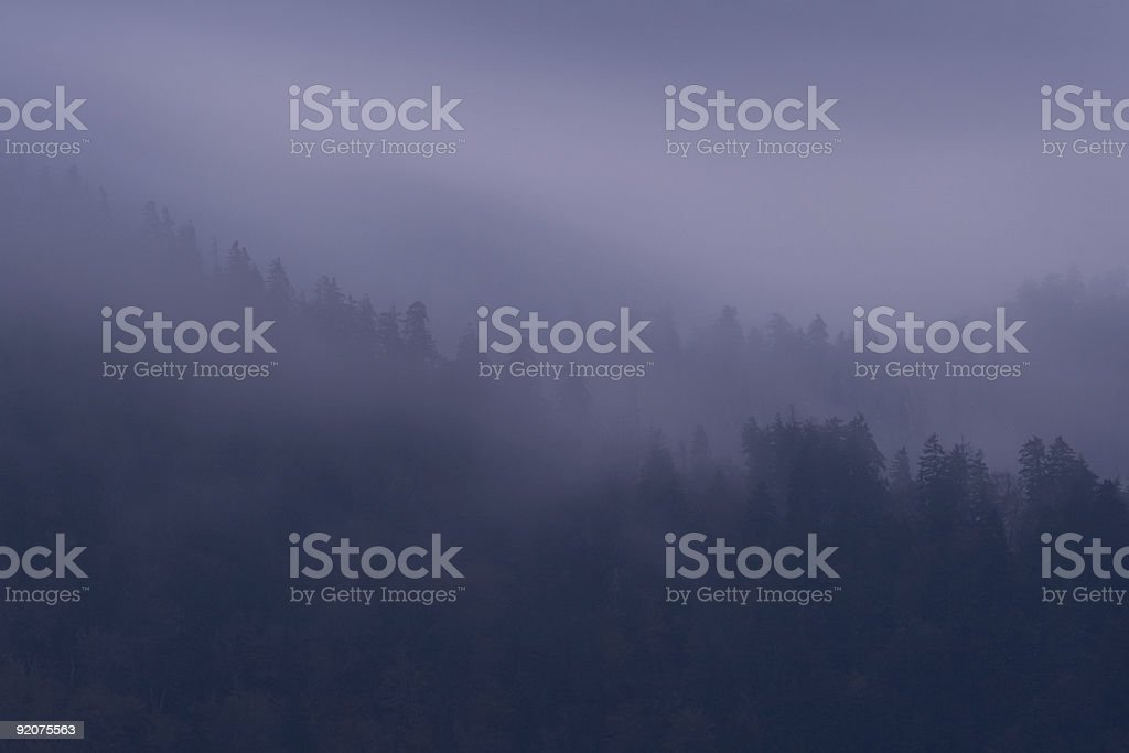Purple Mist royalty-free stock photo