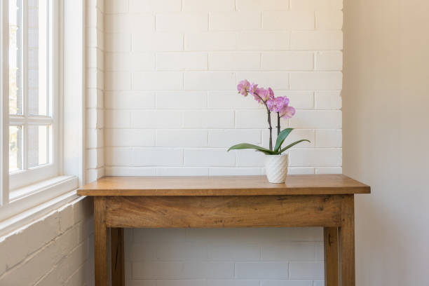 Purple moth orchid on wooden side table stock photo