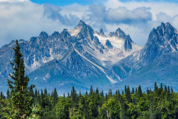 purple mountains majesty - denali national park bildbanksfoton och bilder