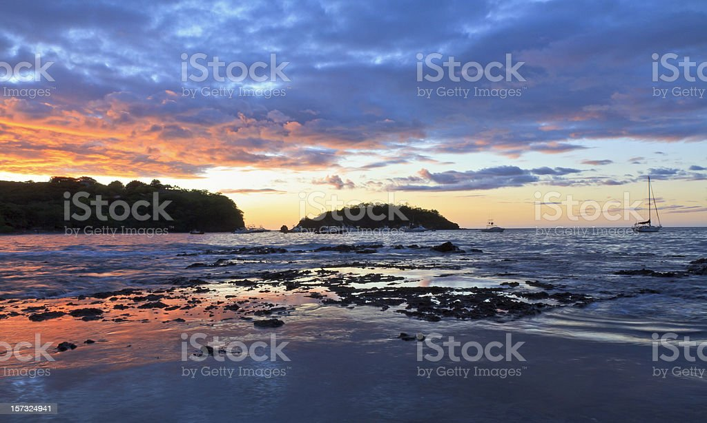Purple Ocotal Sunset stock photo