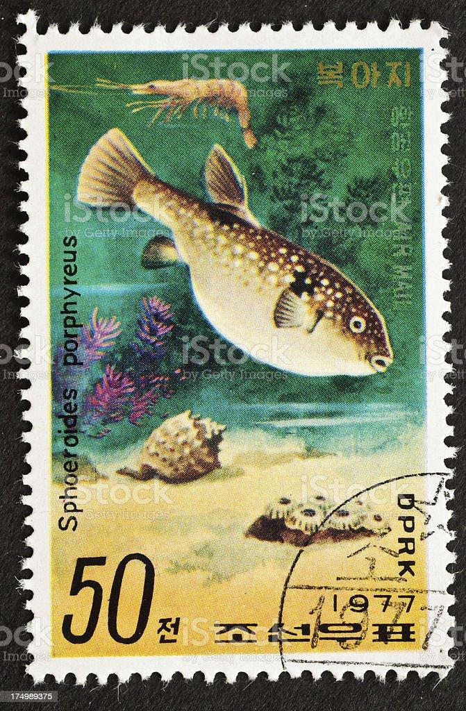 Purple Puffer Fish Stamp royalty-free stock photo