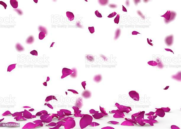 Purple rose petals fall to the floor picture id926334530?b=1&k=6&m=926334530&s=612x612&h=776iqtwa0hqdfexqnt5is3dlbfzrf15khwyh8fut4xq=