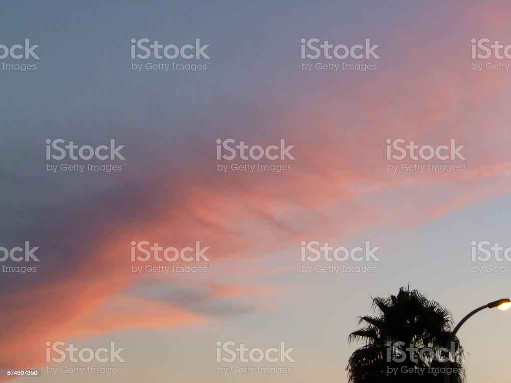 Violet ciel - Photo