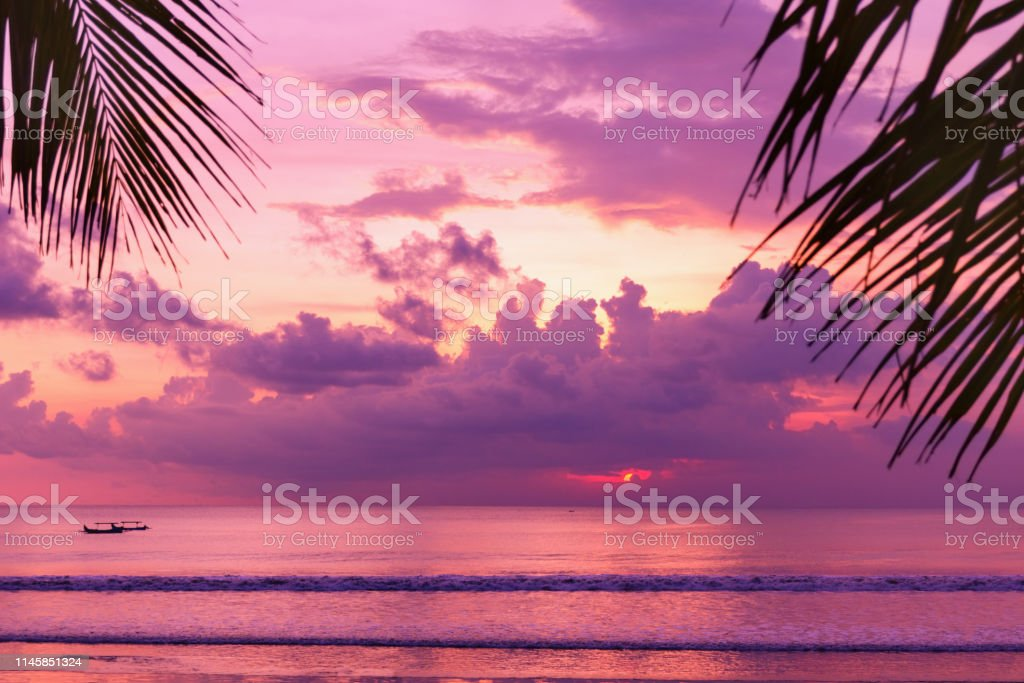 Purple Sunset On The Beach View Of The Coast Through Palm Leaves Stock Photo Download Image Now Istock