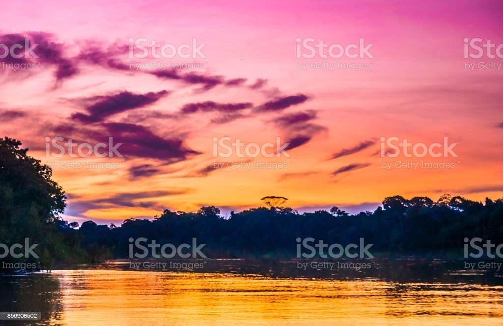 Purple sunset over Amazon river in the rainforest of Brazil stock photo
