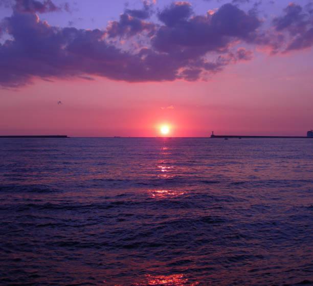Purple sunset – Foto