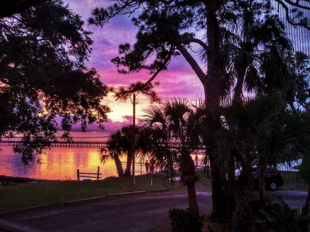 Purple Sunset through the Screen stock photo