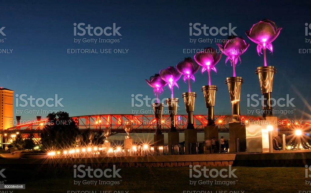Purple Tulip Lights and the Red River Bridge stock photo