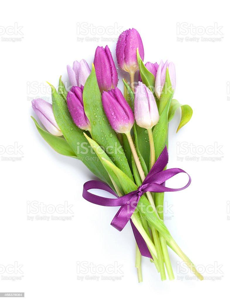 Purple tulips bouquet stock photo