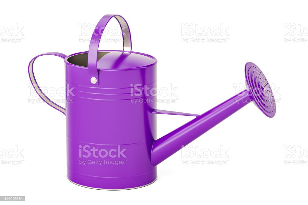 Purple watering can, 3D rendering isolated on white background stock photo