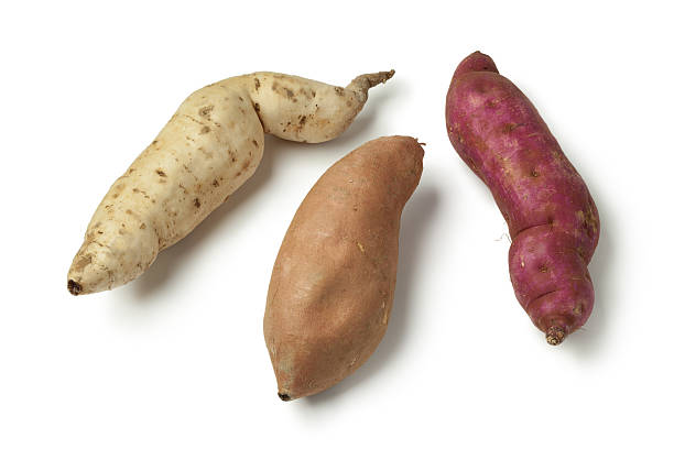 purple, white and orange sweet potatoes - lila palette stock-fotos und bilder