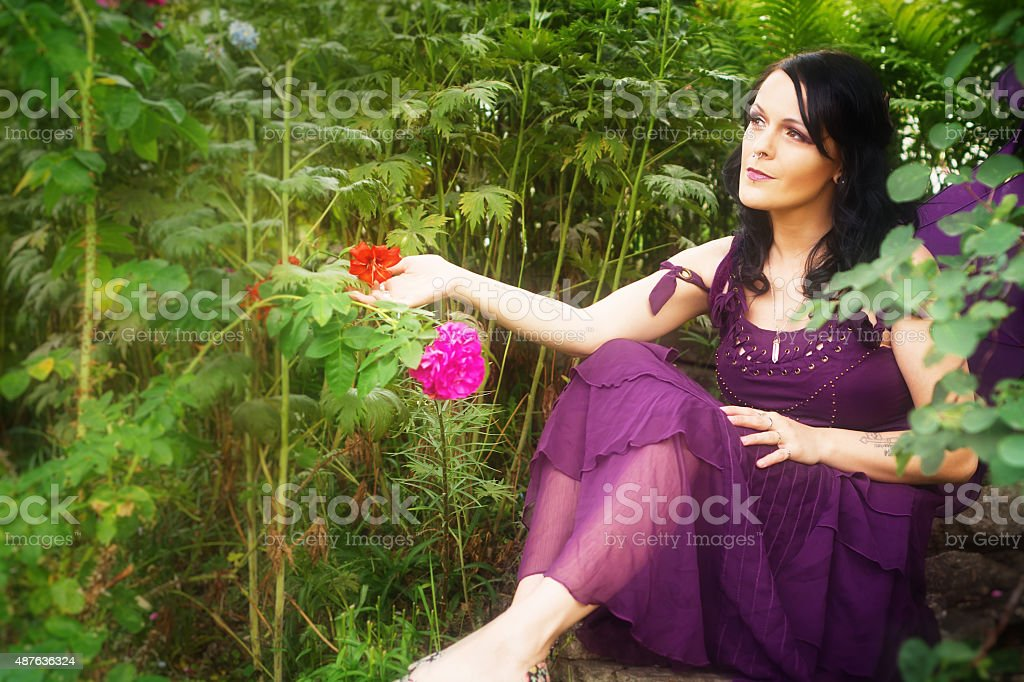 Purple winged Faery sitting in garden touching flower.. stock photo