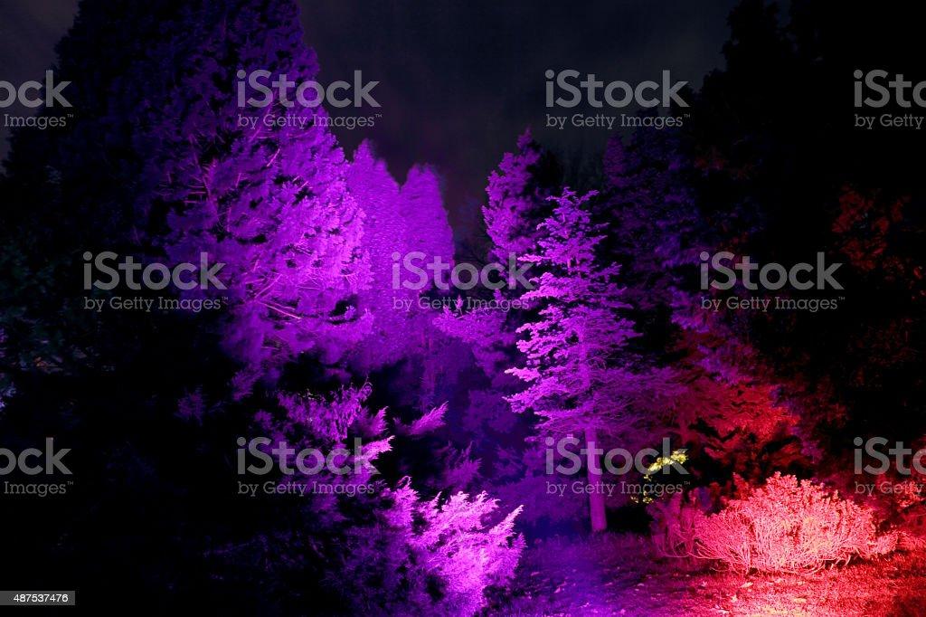 purple world stock photo