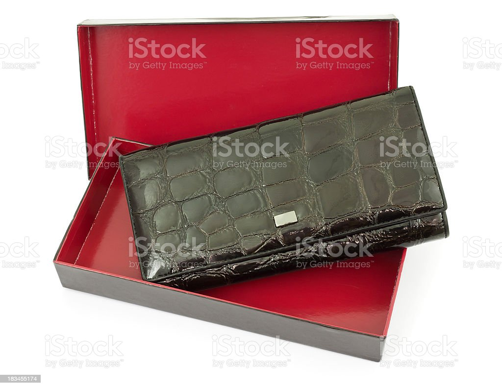 Purse from a brown skin royalty-free stock photo