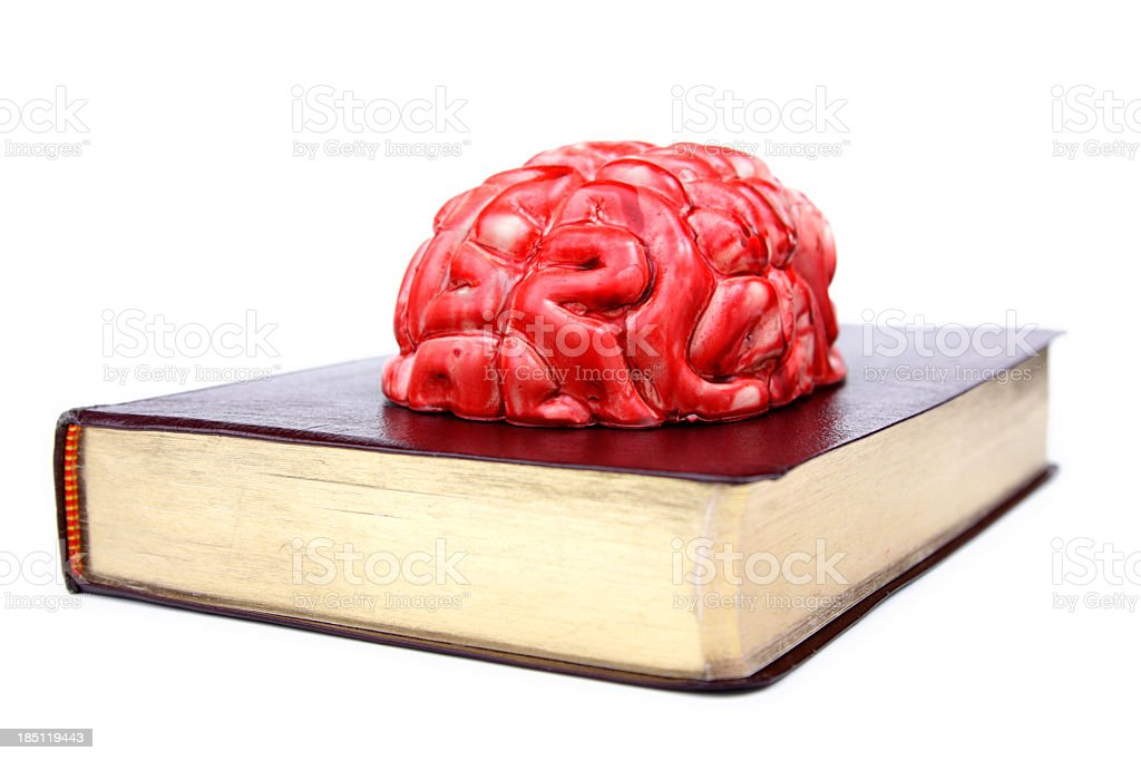 Pursuit of Knowledge stock photo