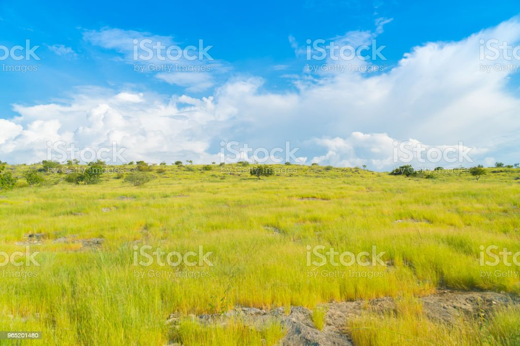 Bukit Purukambera, Sumba, Indonesia royalty-free stock photo