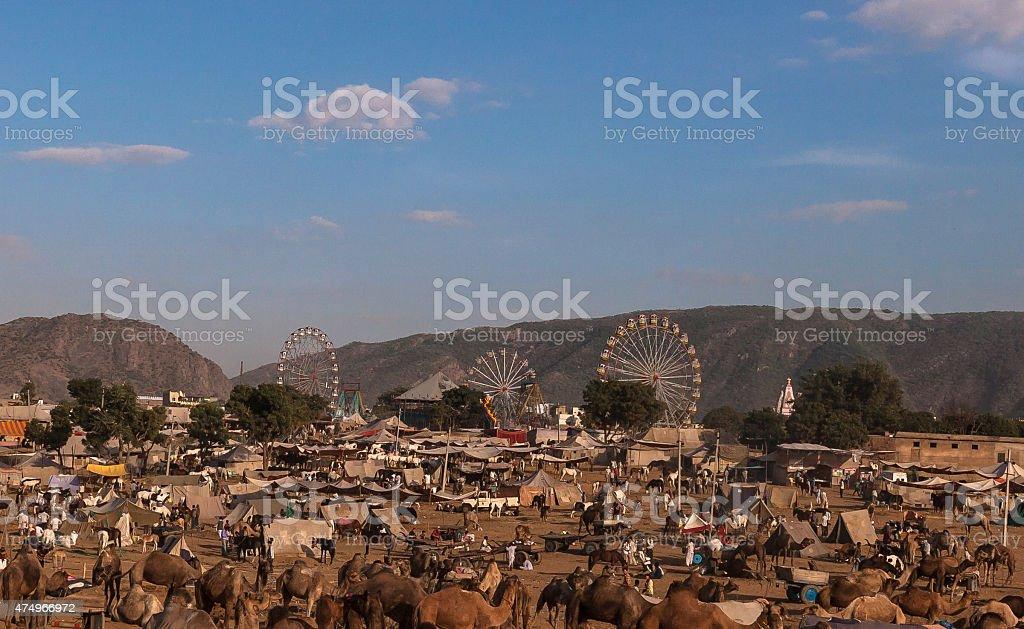 Pushkar Camel Fair stock photo