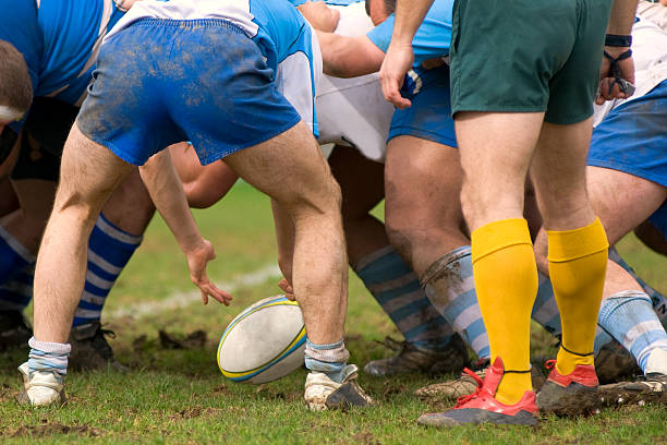 rugby - – Foto