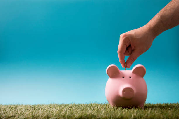 Putting coin into the piggy bank on green grass and blue sky stock photo