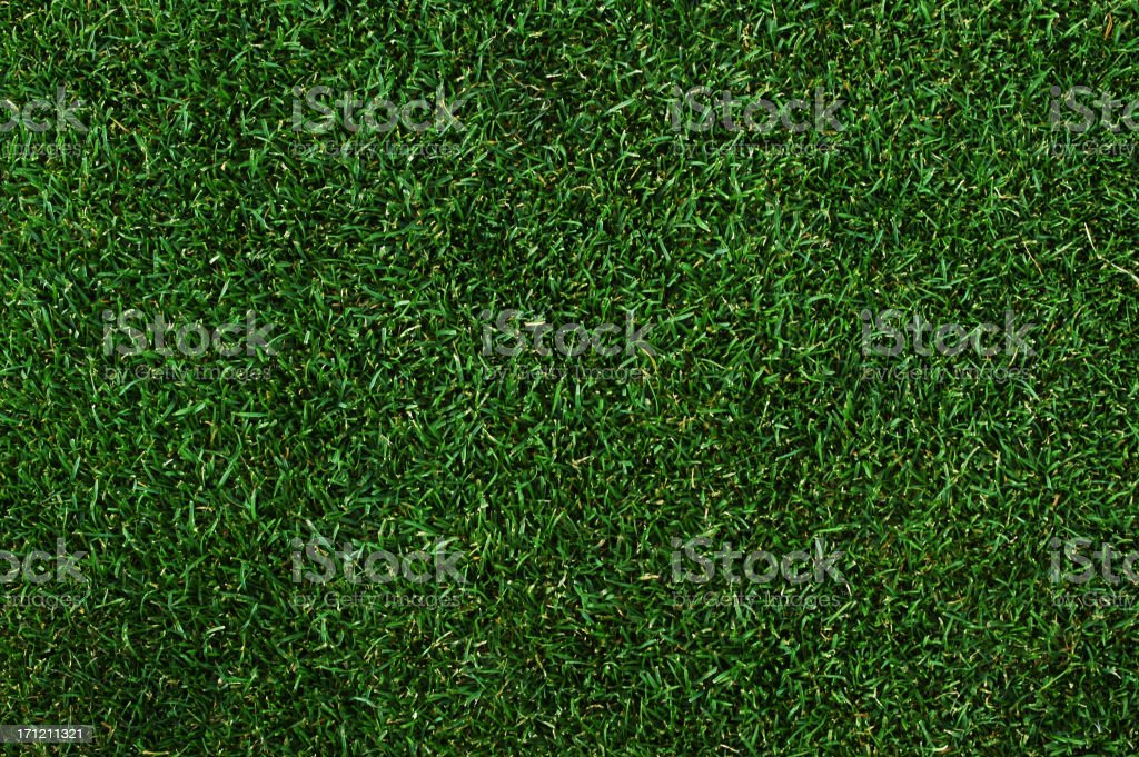 Putting green background stock photo