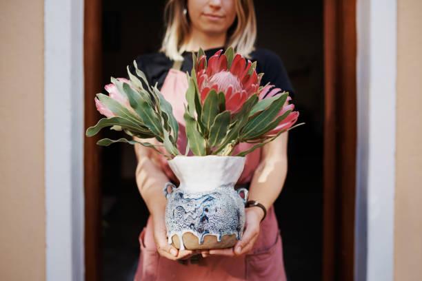 ihre beste arbeit vorlegen - protea strauß stock-fotos und bilder