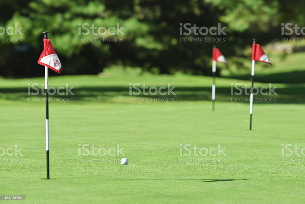 putting practice area royalty-free stock photo