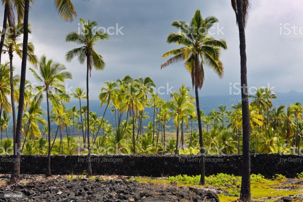 Pu'uhonua o Honaunau National Historical Park, Hawaii stock photo