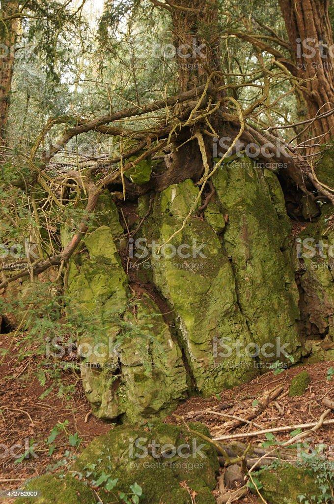 Puzzle wood stock photo