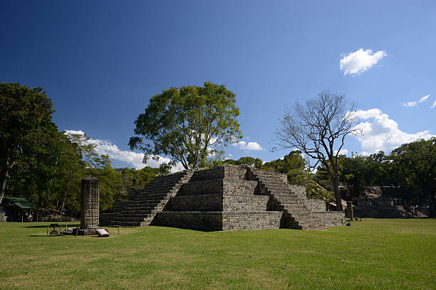 Pyramid and Stella in  ancient Mayan city of Copan. Honduras Pyramid and Stella in the ancient Mayan city of Copan in Honduras. honduras stock pictures, royalty-free photos & images