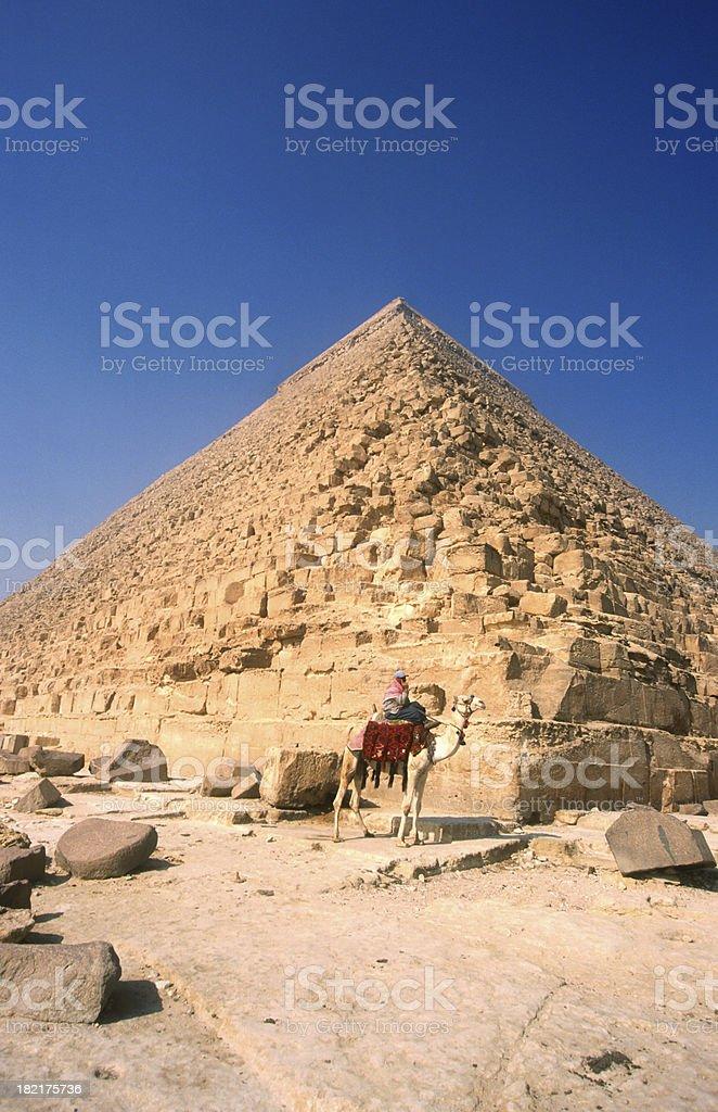 Pyramid Camel stock photo