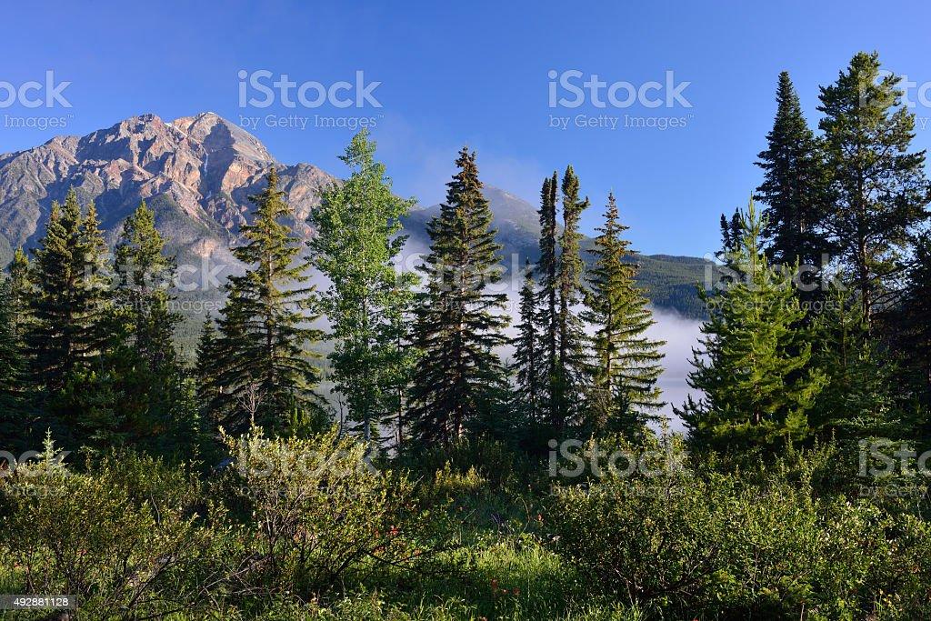 Pyramid Mountain of Jasper National Park at Sunrise stock photo