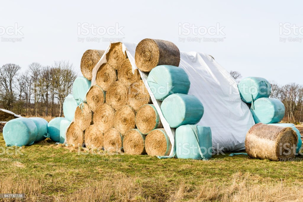Pyramid of straw stock photo