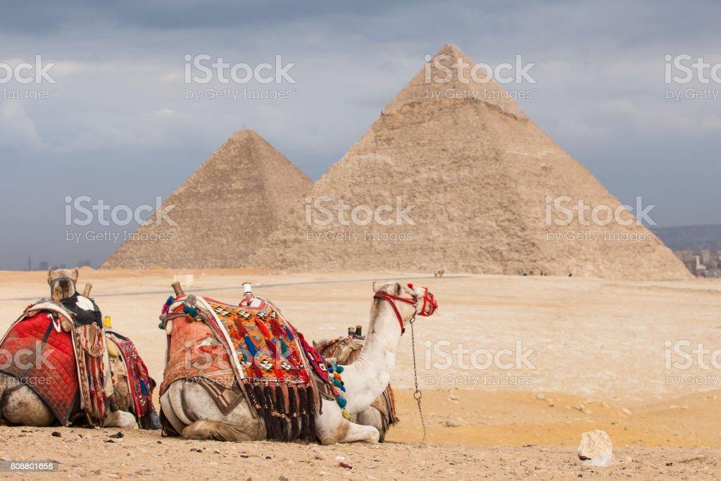 Pyramids egypt stock photo