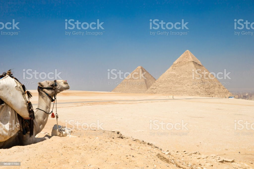 pyramids of Giza in Cairo, Egypt. royalty-free stock photo