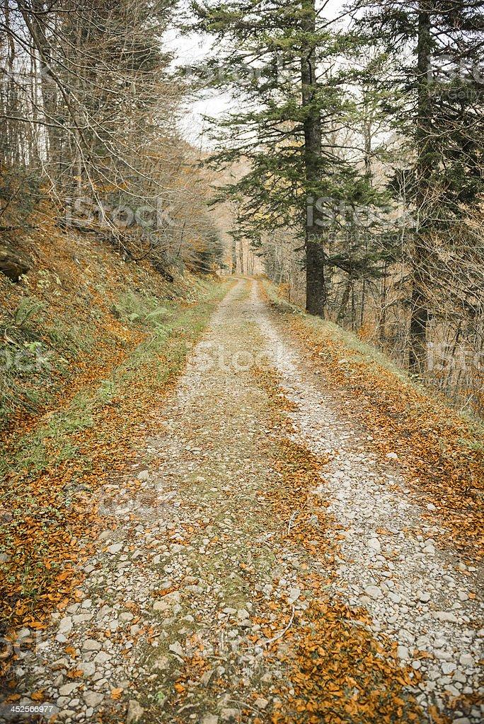 Pyrenees Path stock photo