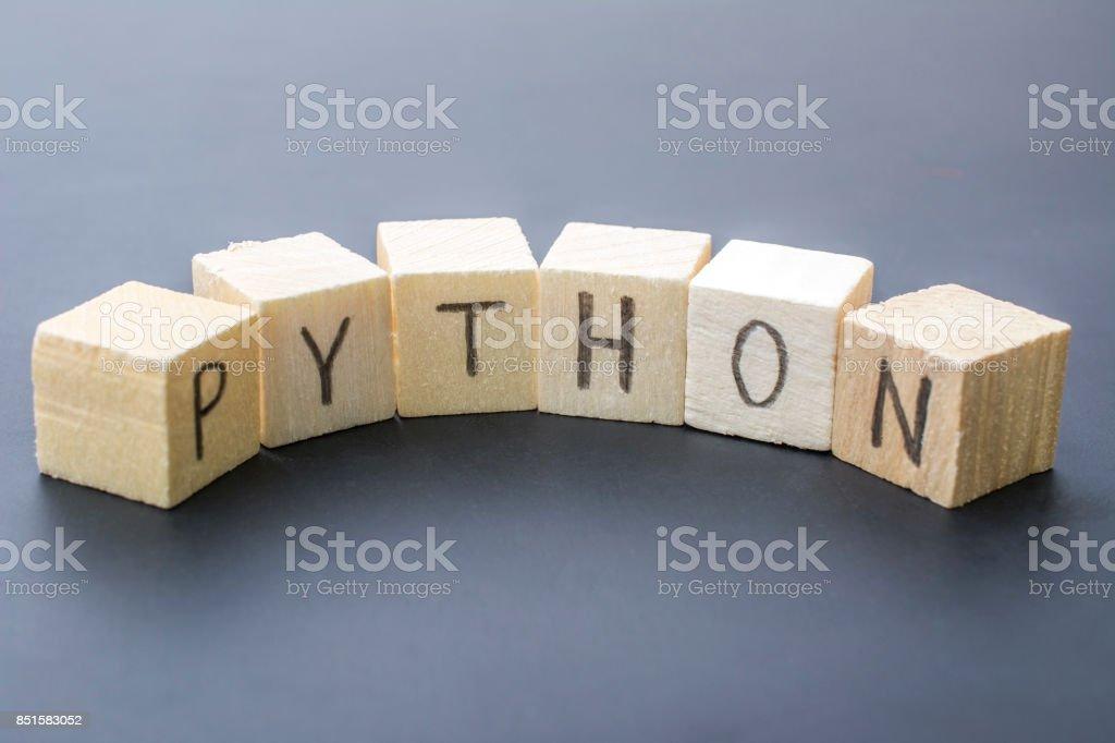 Python concept close-up photo stock photo
