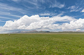 Photo Taken In Qinghai province, China.