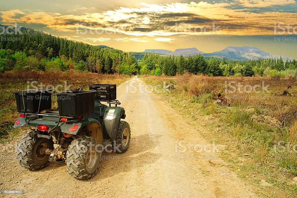 Quad bike, ATV, in the wilderness stock photo