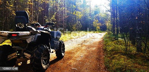 Quad bike on a forest road