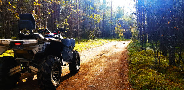 Quad bike on a forest road Quad bike on a forest road quadbike stock pictures, royalty-free photos & images