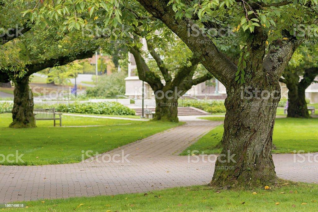 Quadrangle at University of Washington in Seattle royalty-free stock photo