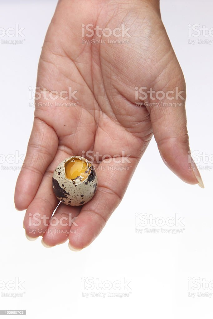 Quail egg broken in hand royalty-free stock photo