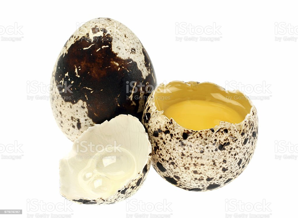 Quail egg royalty-free stock photo