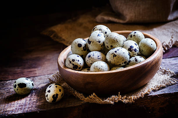 quail eggs in a bowl - wachtelei stock-fotos und bilder