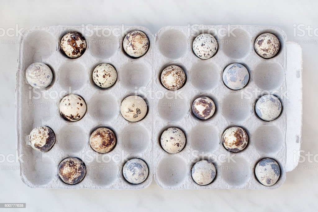 Quail eggs in a carton are filled in a staggered manner stock photo