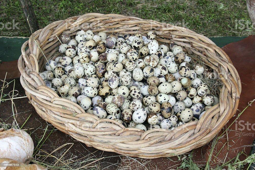 Quail eggs. royalty-free stock photo